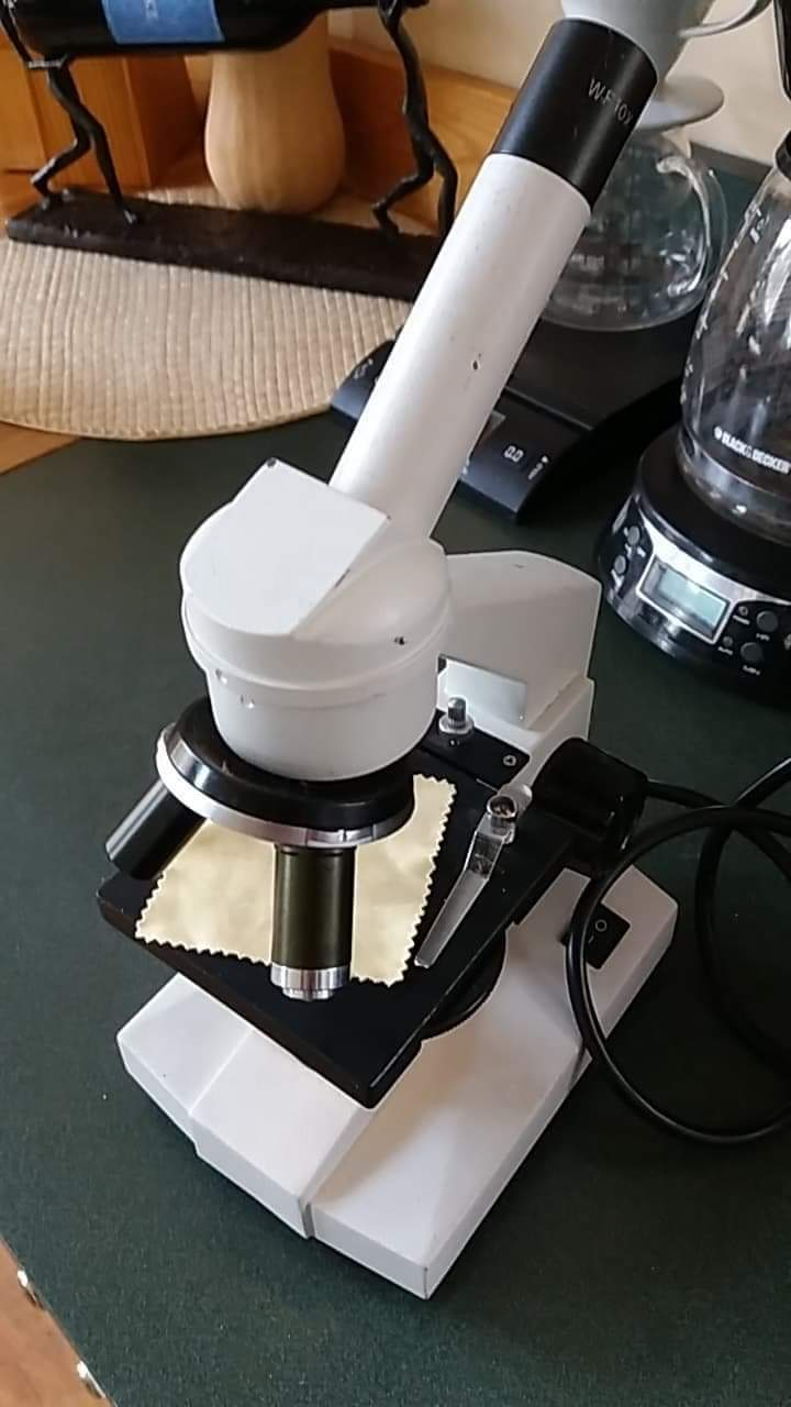 Used Walter 10x Microscope